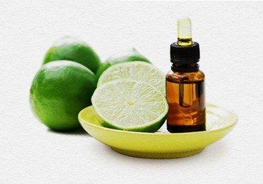 OBUS aromatherapy diploma course